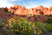 Arches National Park 11784